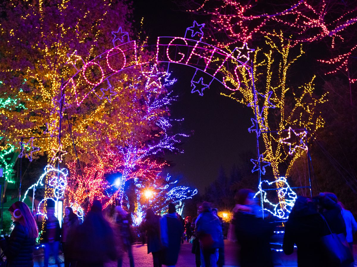 People visit a zoo decorated with holiday lights.