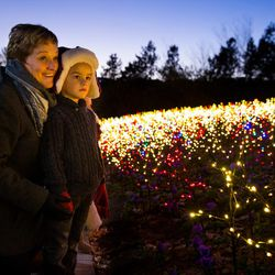 Guests view Thanksgiving Point's new light display, Luminaria, which is open to the public through Dec. 30.