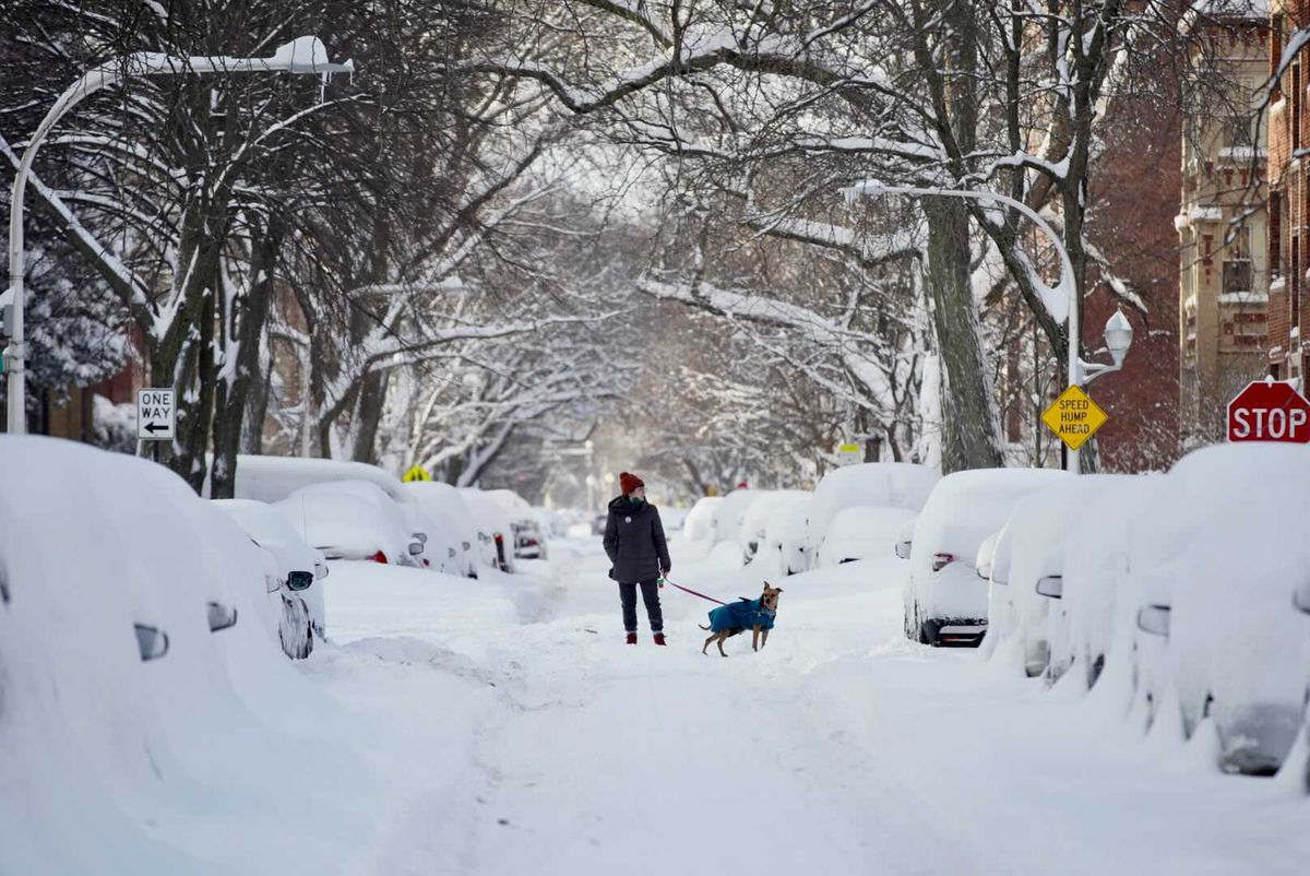 People and their pets resorted to walking in the middle of the street Tuesday because sidewalks were covered with up to 18 inches of snow.