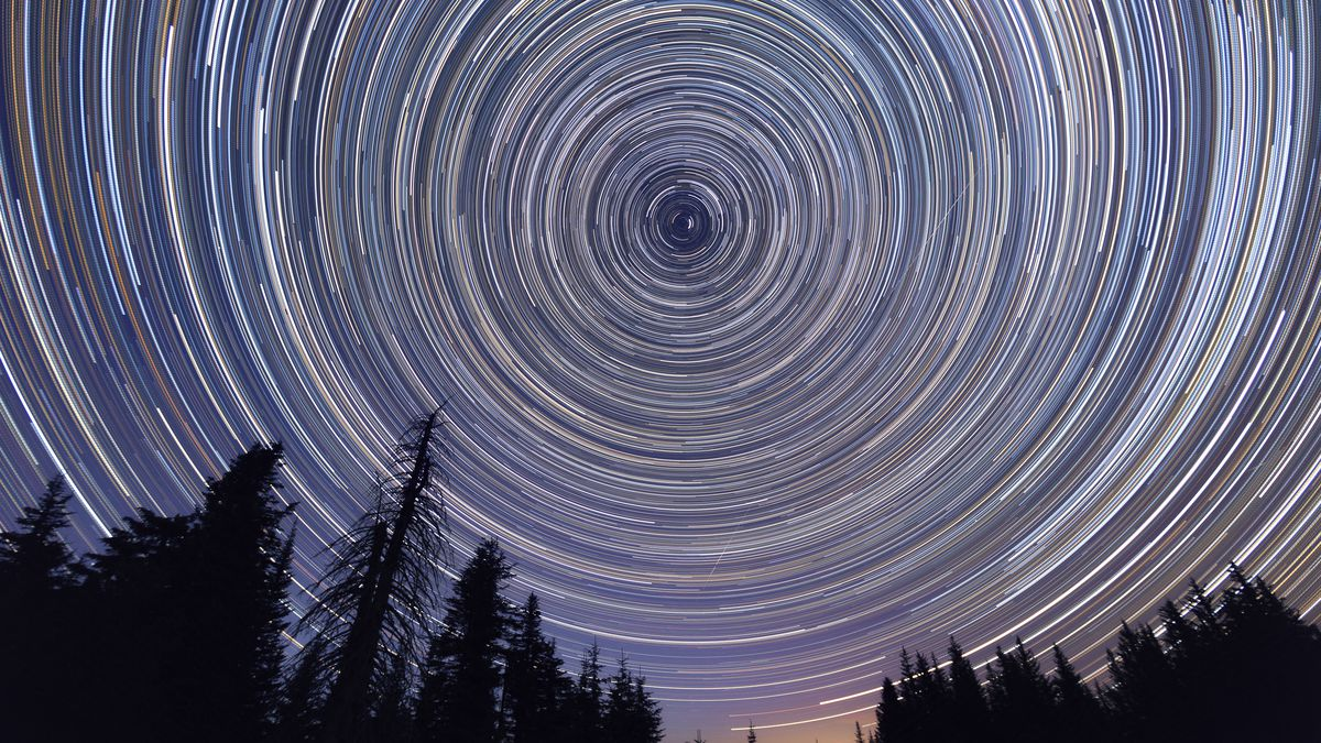 A long-exposure photo of stars in rotation over a forest, giving the effect of concentric circles of light.
