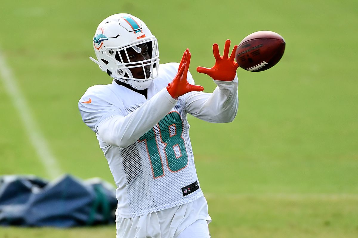 Miami Dolphins wide receiver Preston Williams catches a pass during training camp at Baptist Health Training Facility.