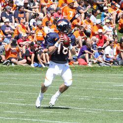 Denver Broncos quarterback Peyton Manning drops back to throw
