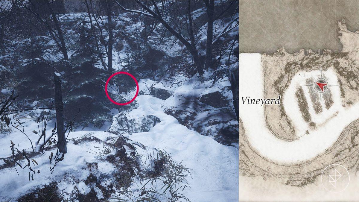 Resident Evil Village Goat of Warding Castle Dimitrescu collectible Vineyard map location
