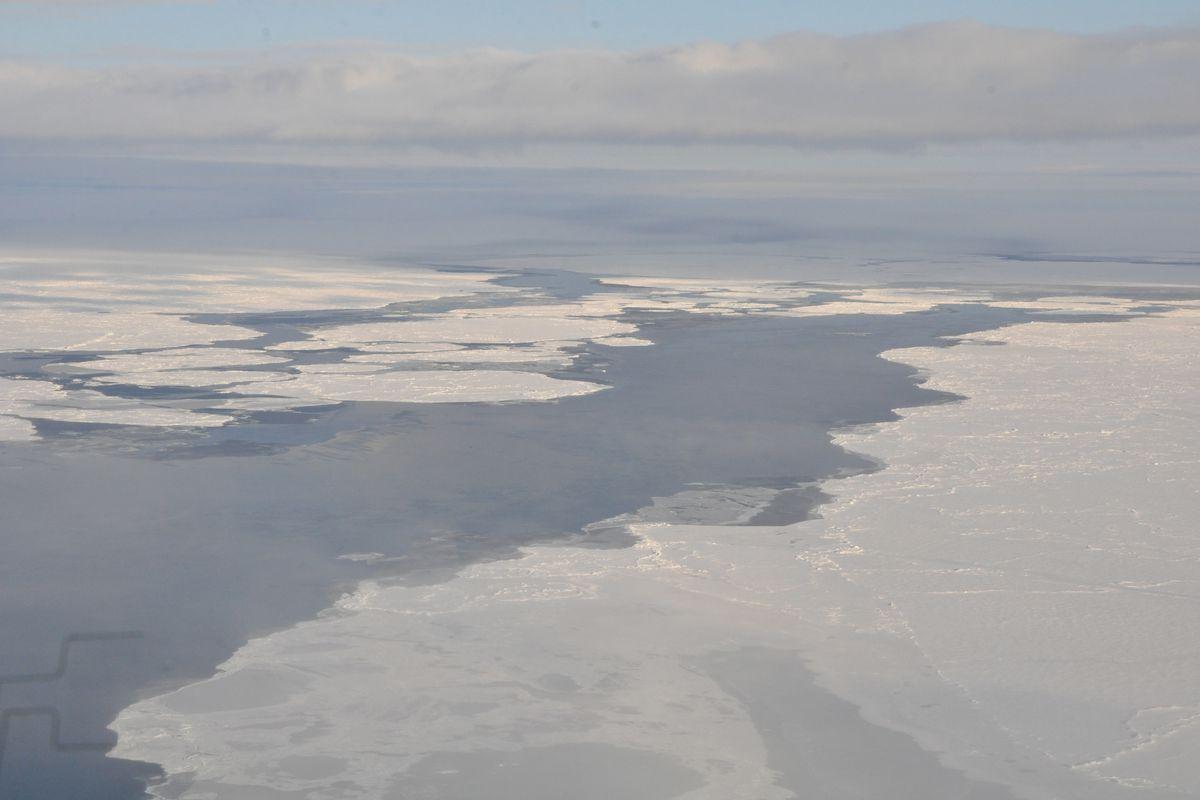 Arctic sea ice in Beaufort/Chuckchi Seas seen from NOAA's P3 flight in autumn 2014