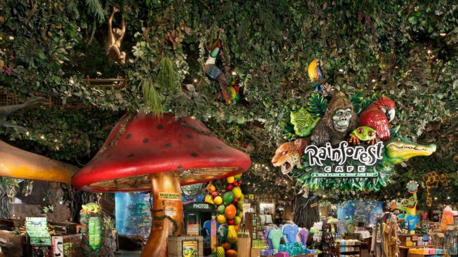 Rainforest Cafe Menu In Nashville Tn