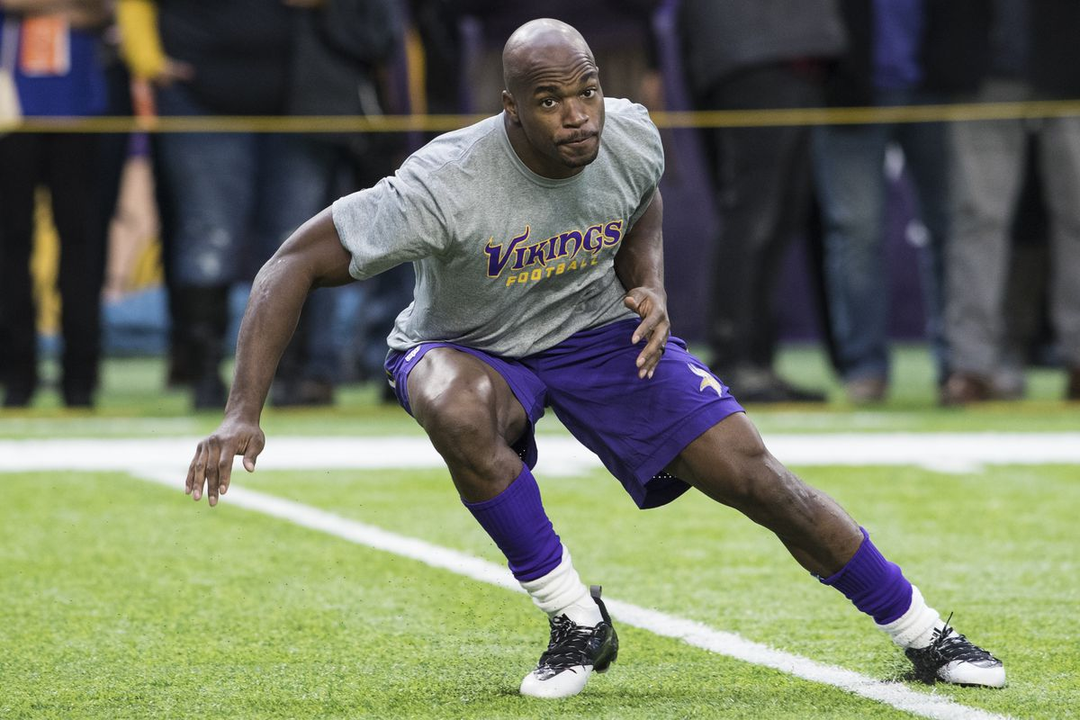 Adrian peterson will probably be back with the vikings but dont photo by adam bettchergetty images voltagebd Choice Image