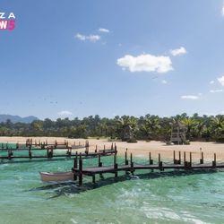 The Tropical Coast biome.