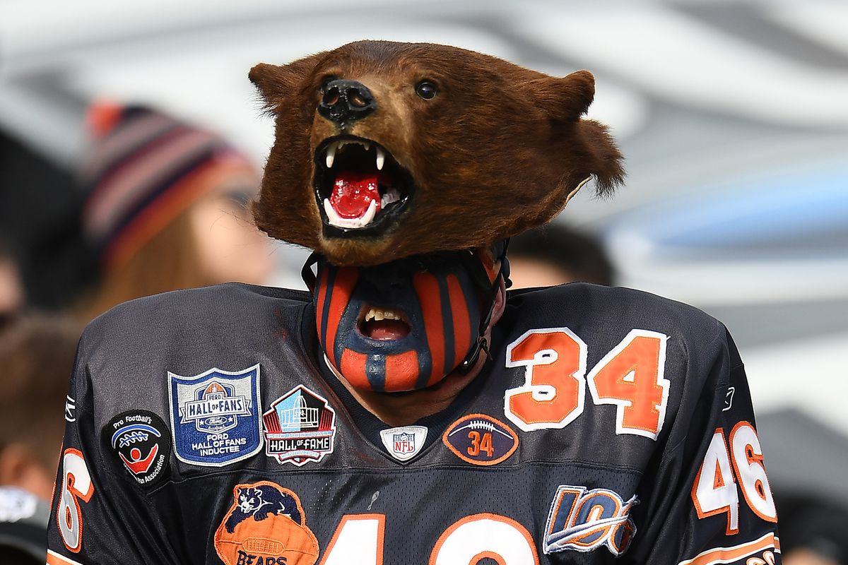 Fans of the Chicago Bears cheer during a game against the New York Giants at Soldier Field on November 24, 2019 in Chicago, Illinois.