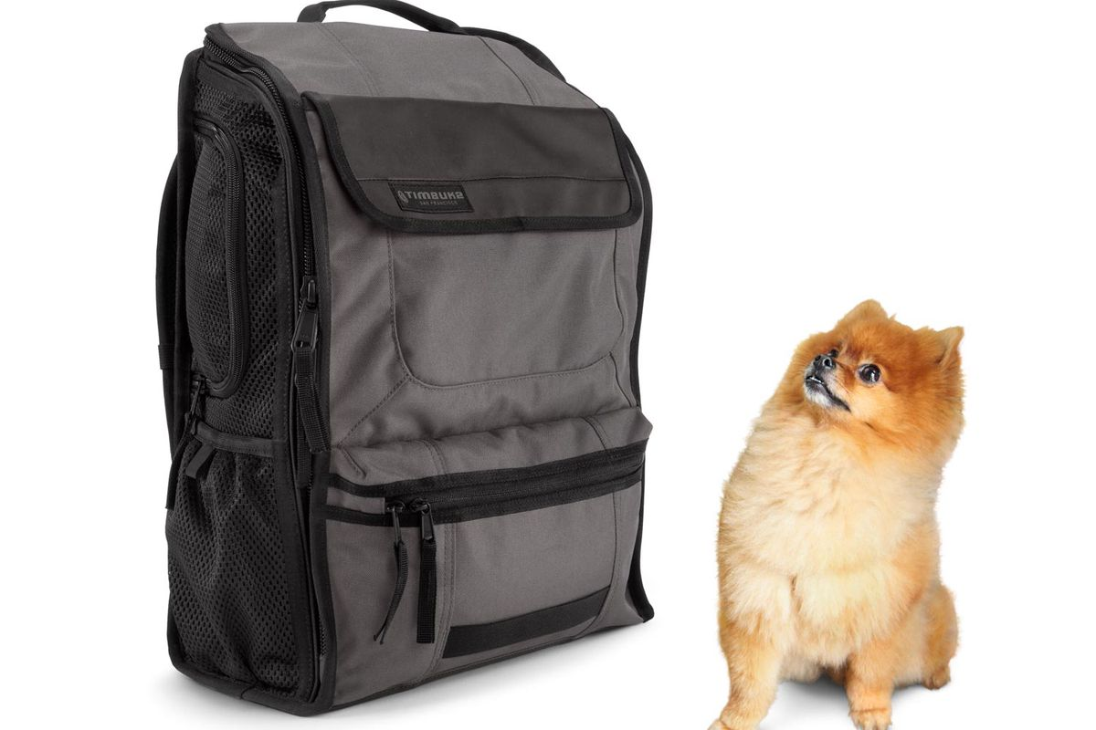 """Timbuk2's MuttMover. Cute dog not included. Image via <a href=""""http://www.timbuk2.com/muttmover-dog-carrier-backpack/329.html"""">Timbuk2</a>"""