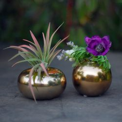 """JoJo Vases, <a href=""""http://www.sprouthome.com/shop/vases-2/jojo-vases/"""">$12</a> at Sprout Home"""