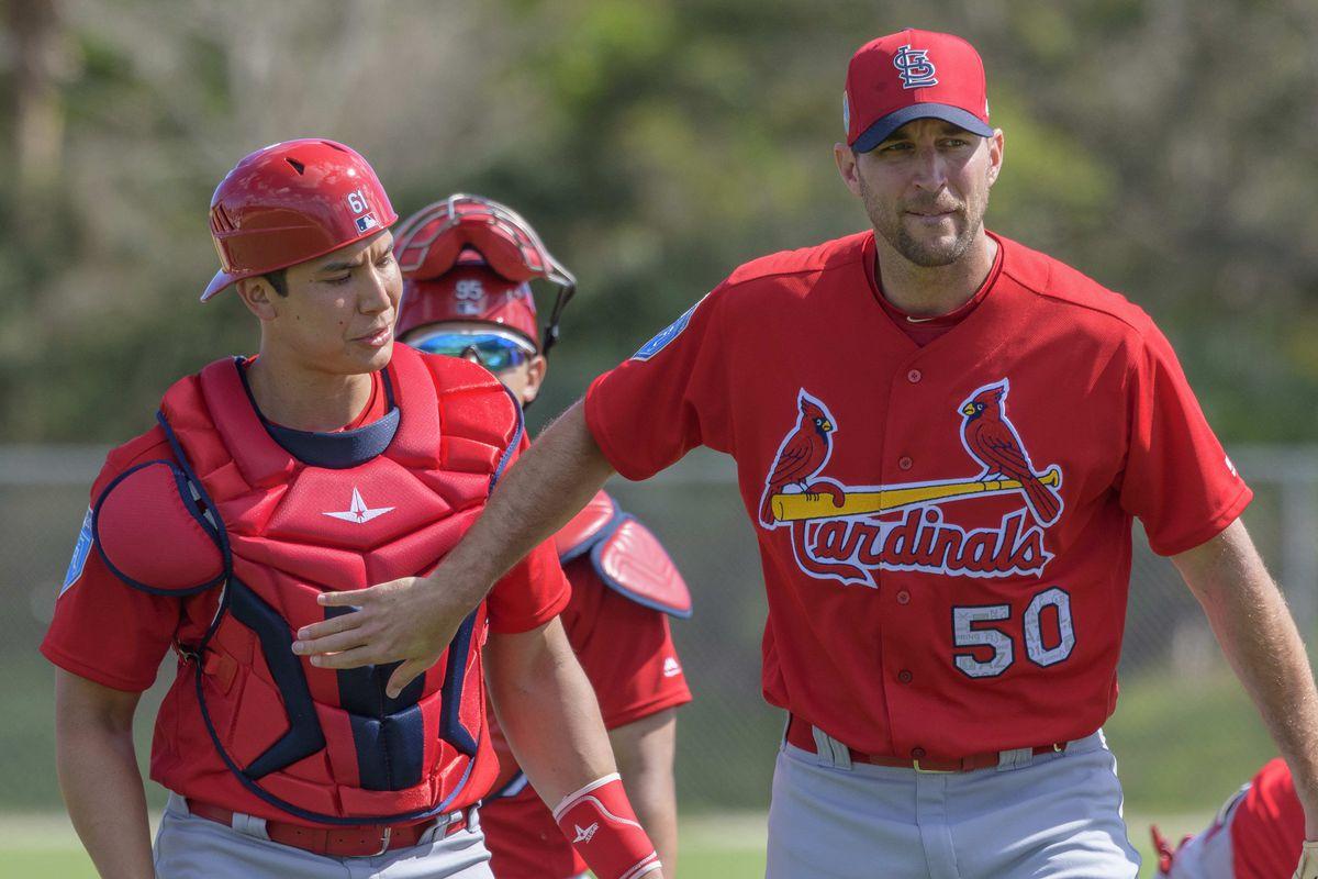 MLB: St. Louis Cardinals-Workouts