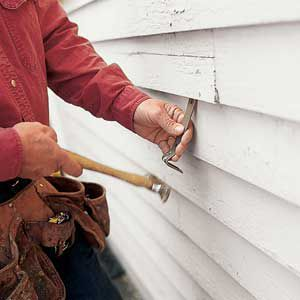 2. PRY: To break loose the lower half of the damaged piece, start at one end and gently tap a small pry bar underneath the butt edge, next to a nail. Pull the bar toward you, don't push it, so you don't mar or crack the neighboring clapboards.