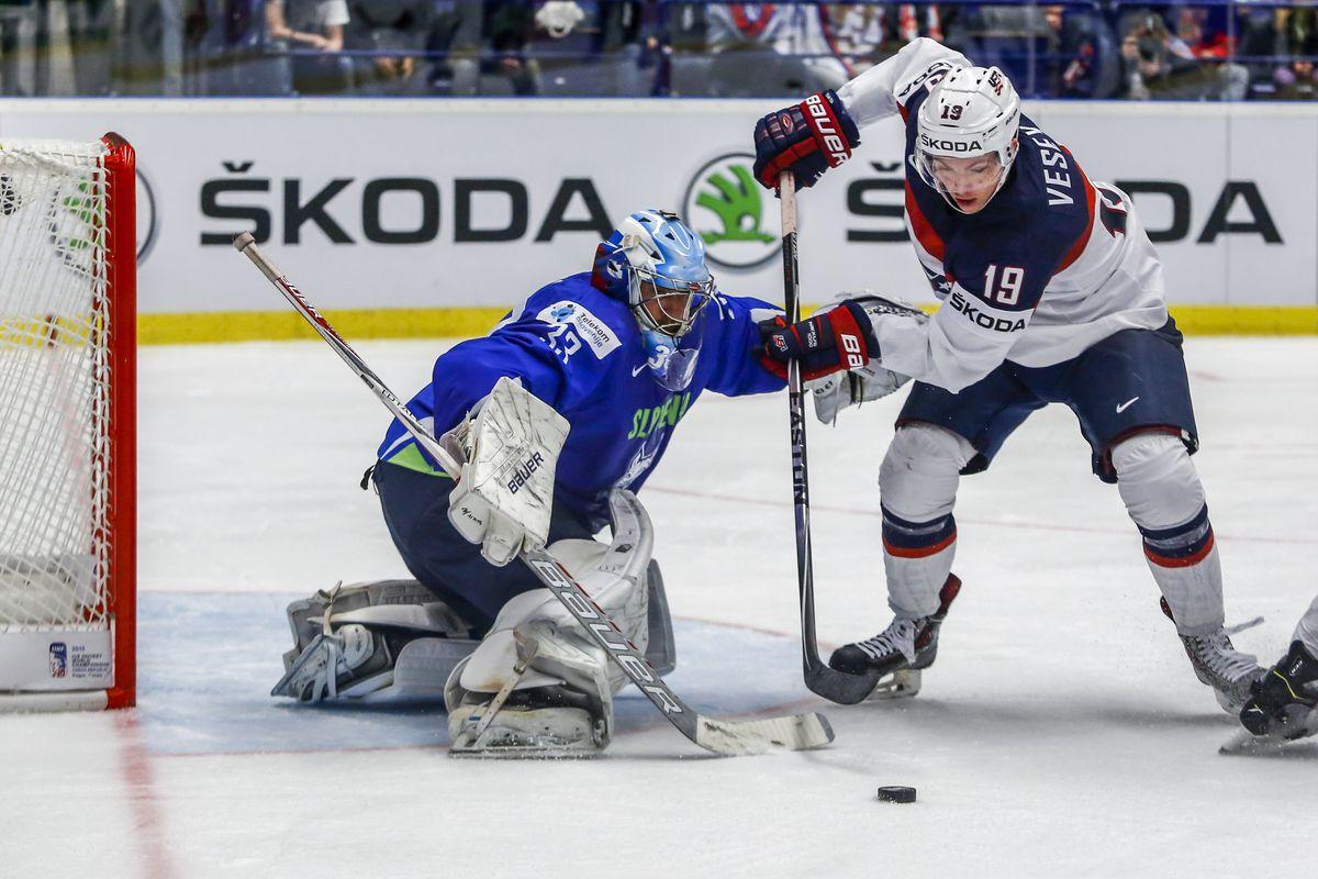 Slovenia v USA - 2015 IIHF Ice Hockey World Championship