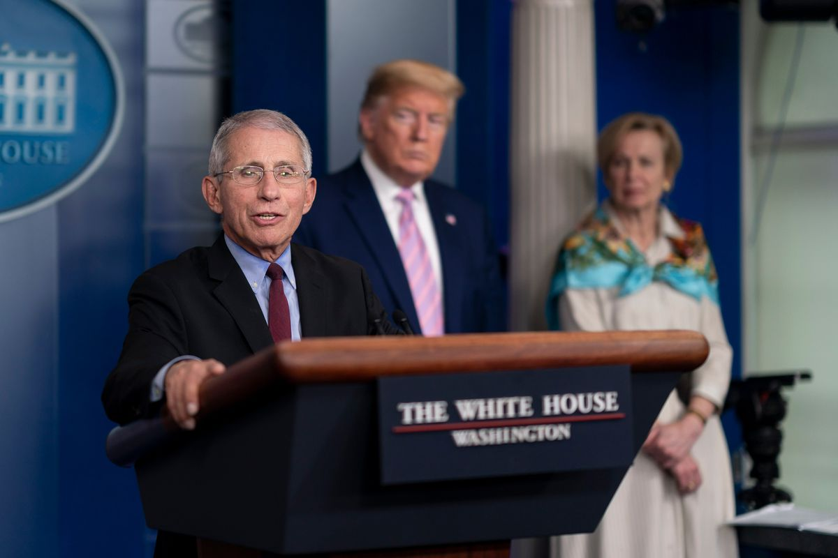 Dr. Anthony Fauci gives a coronavirus update from the White House, April 4, 2020.