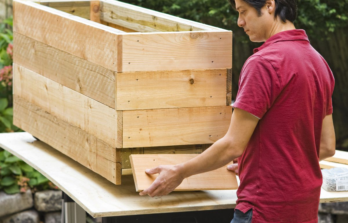 Man Fastens Wooden Board Of Privacy Planter