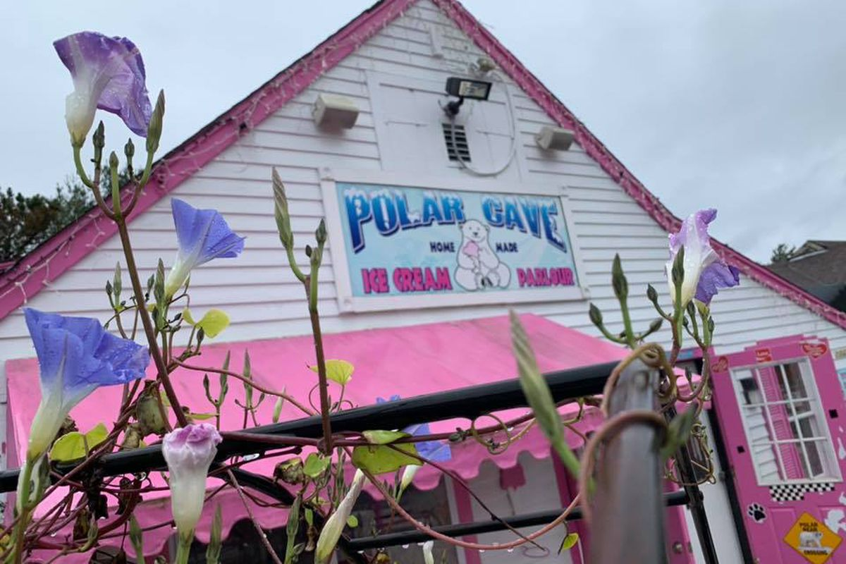 Exterior of a white and pink ice cream shop with a polar bear logo. Spring flowers are blooming in front of the shop.