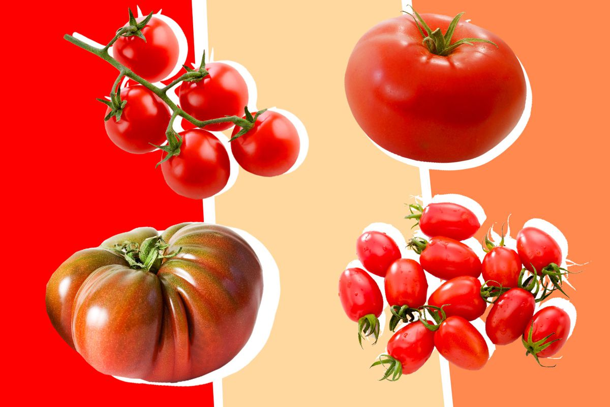 The Difference Between Heirloom Cherry Grape And Other Tomatoes