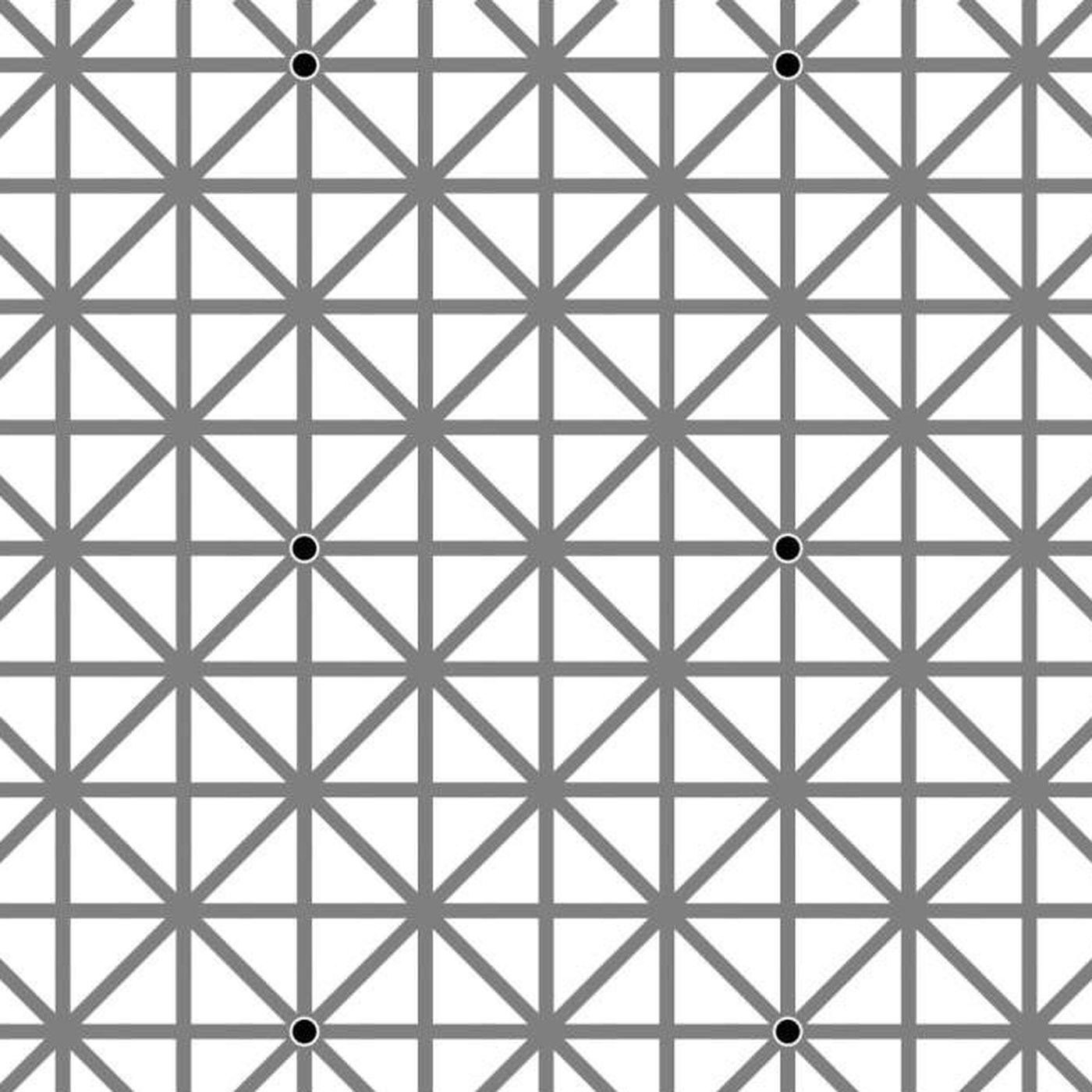 Here's why you can't see all twelve black dots in this optical