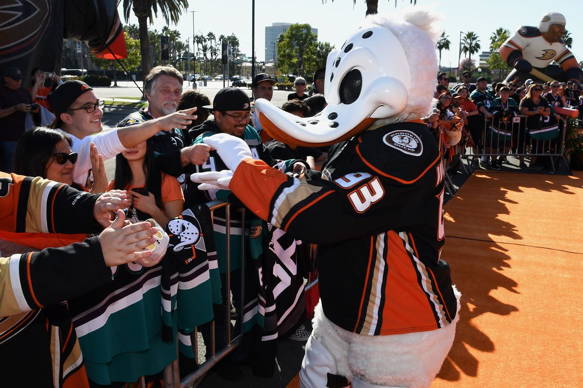 ANAHEIM, CA - OCTOBER 03: Anaheim Ducks mascot Wild Wing on the orange carpet during Ducks opening day ceremonies before a game against the Arizona Coyotes played on October 3, 2019 at the Honda Center in Anaheim, CA.