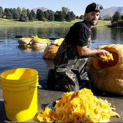 Kyle Fox cleans out a pumpkin before the 2013 Mountain Valley Seed Co. Ginormous Pumpkin Regatta at Sugarhouse Park on Saturday, October 19, 2013.