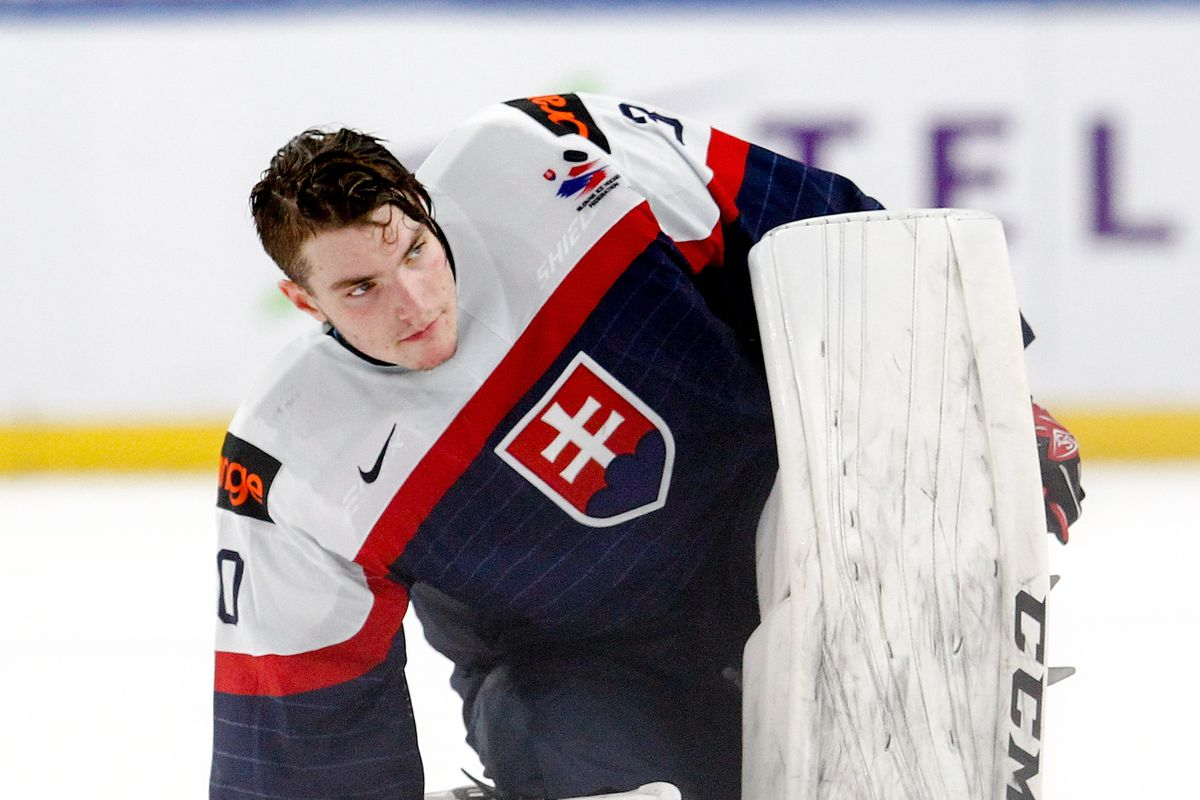 Looking At The Drafts Biggest Risers And Fallers Goalies Edition