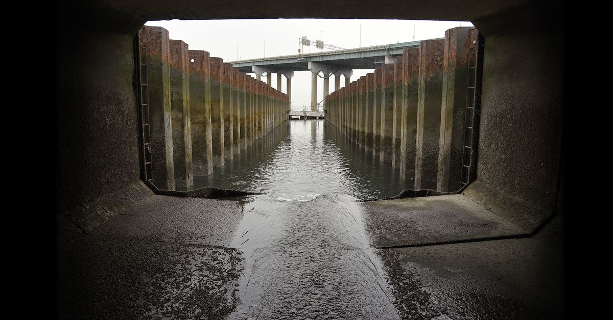 NYC has a plan to clean its sewage-filled waterways. Does it go far enough?