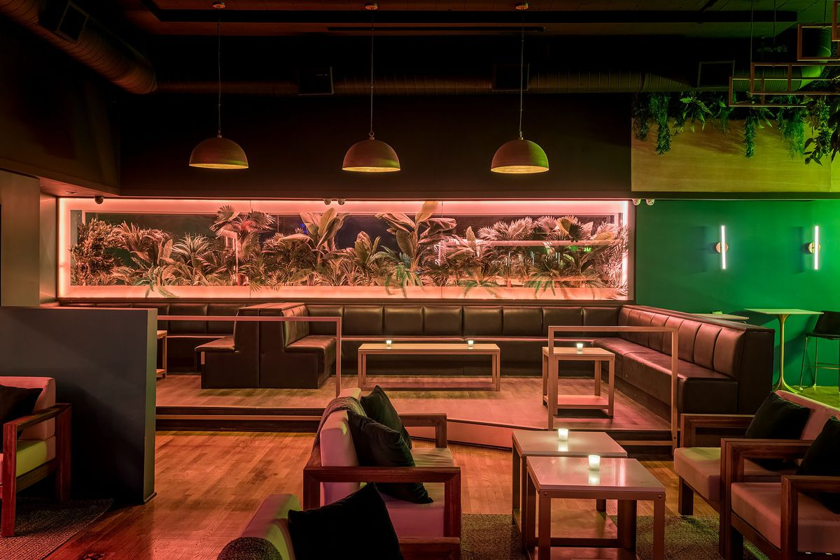 Lush greenery and lounge seating with dim lights at Canary, Santa Monica.