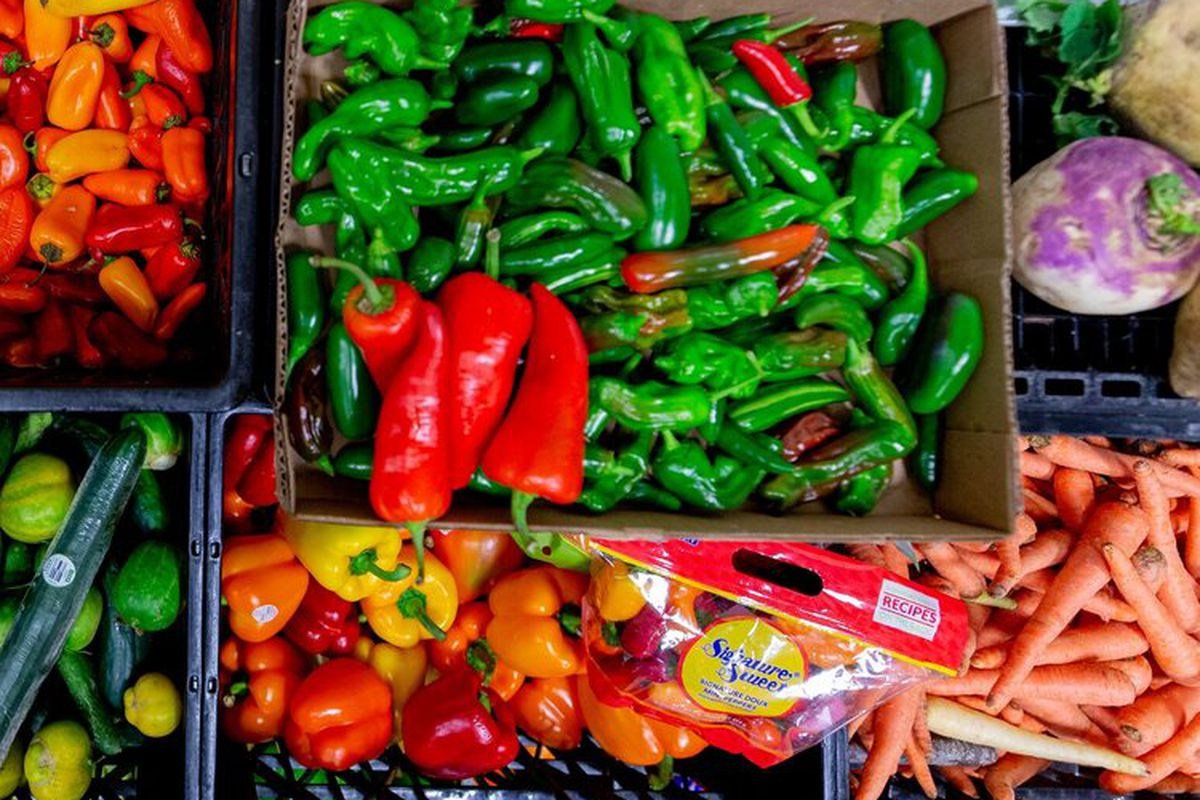 A collection of green and red peppers, carrots, and other vegetables in a donation box