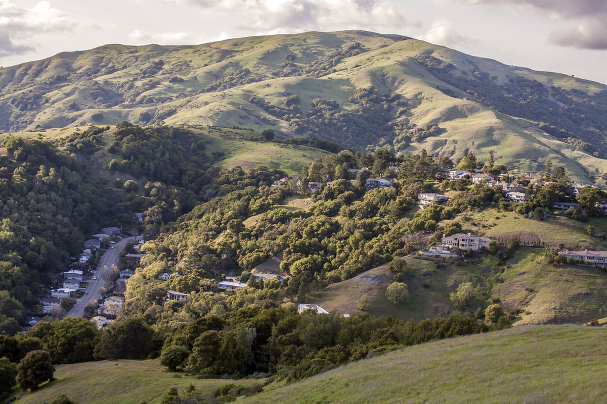 Houses in the Marin County hills.