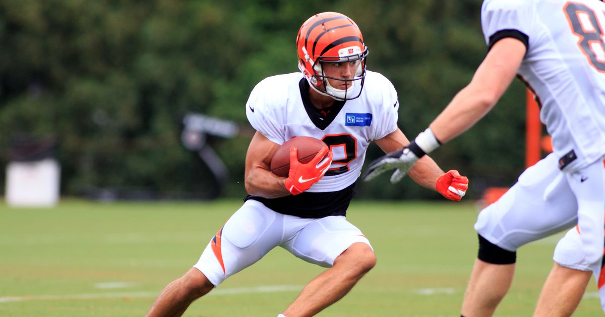 Alex Erickson leaves no doubt he belongs on Bengals' 53-man roster