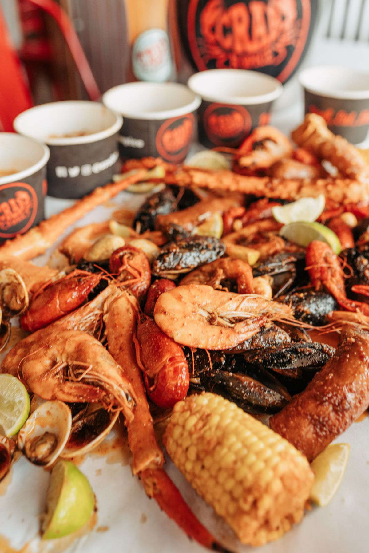 A medley of seafood on a white background.