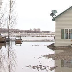 Garland Mayor Todd MIller says almost every house in the city has groundwater problems. The situation is so bad he declared a state of emergency for the city in Box Elder County on Thursday, Feb. 23, 2017.