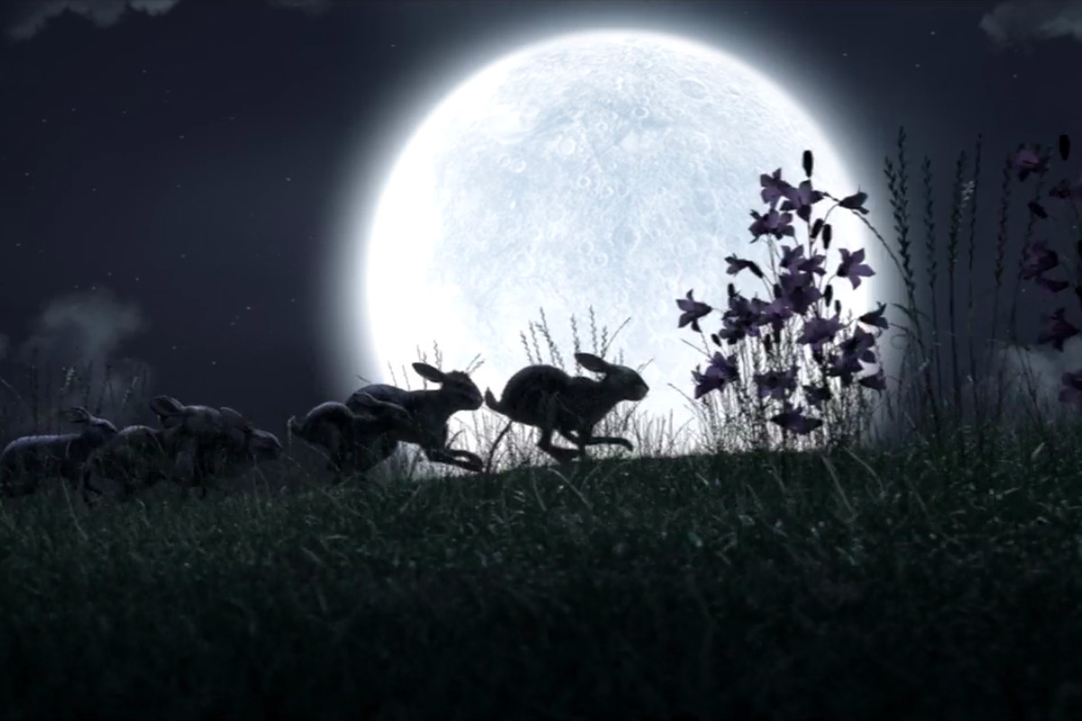 Netflixs Watership Down Proves It Was A Horror Story All Along Vox