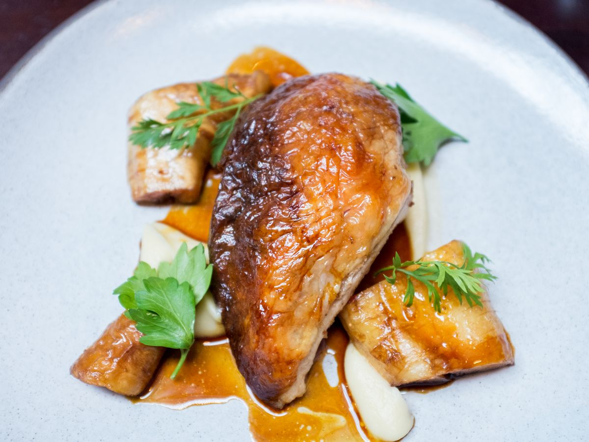 A piece of chicken with some browning on the edges sits at the center of a white plate and is surrounded by shallots, mushrooms, and a sweet potato purée.