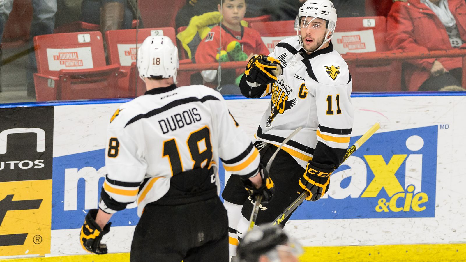 2016 NHL Draft Profiles: Is Pierre-Luc Dubois worth the ...