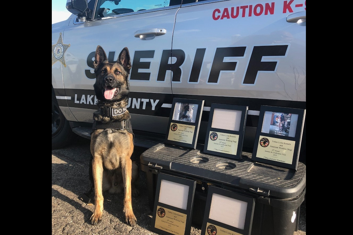 K9 Boomer won several prizes at a national competition