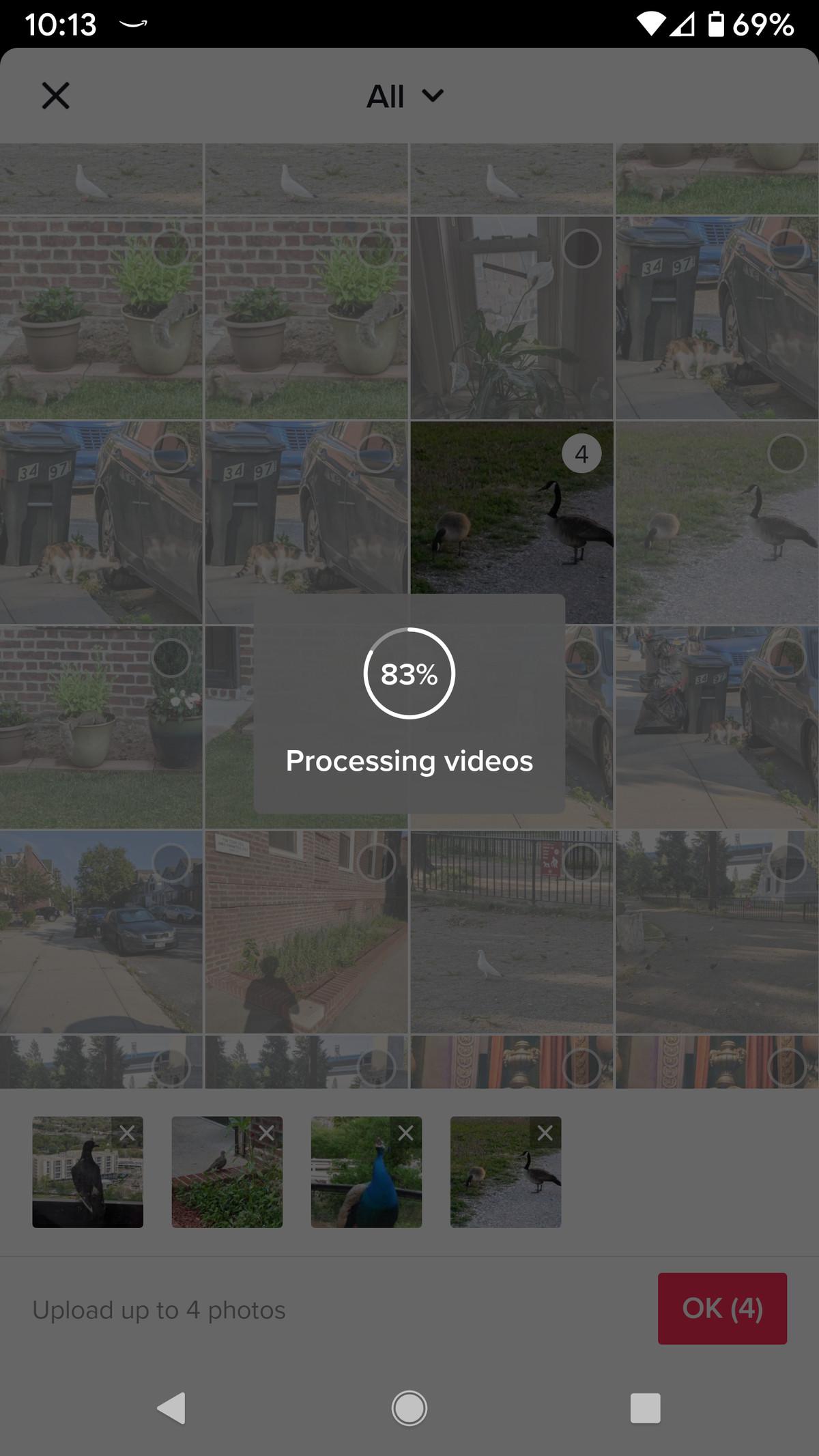 قد تستغرق معالجة الصور بضع ثوانٍ.