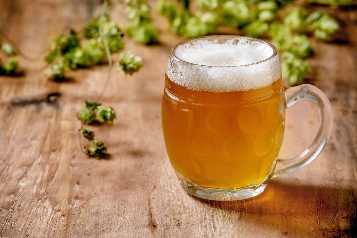 Classic glass mug of fresh cold foamy lager beer with green hop cones behind over wooden texture background. Copy space