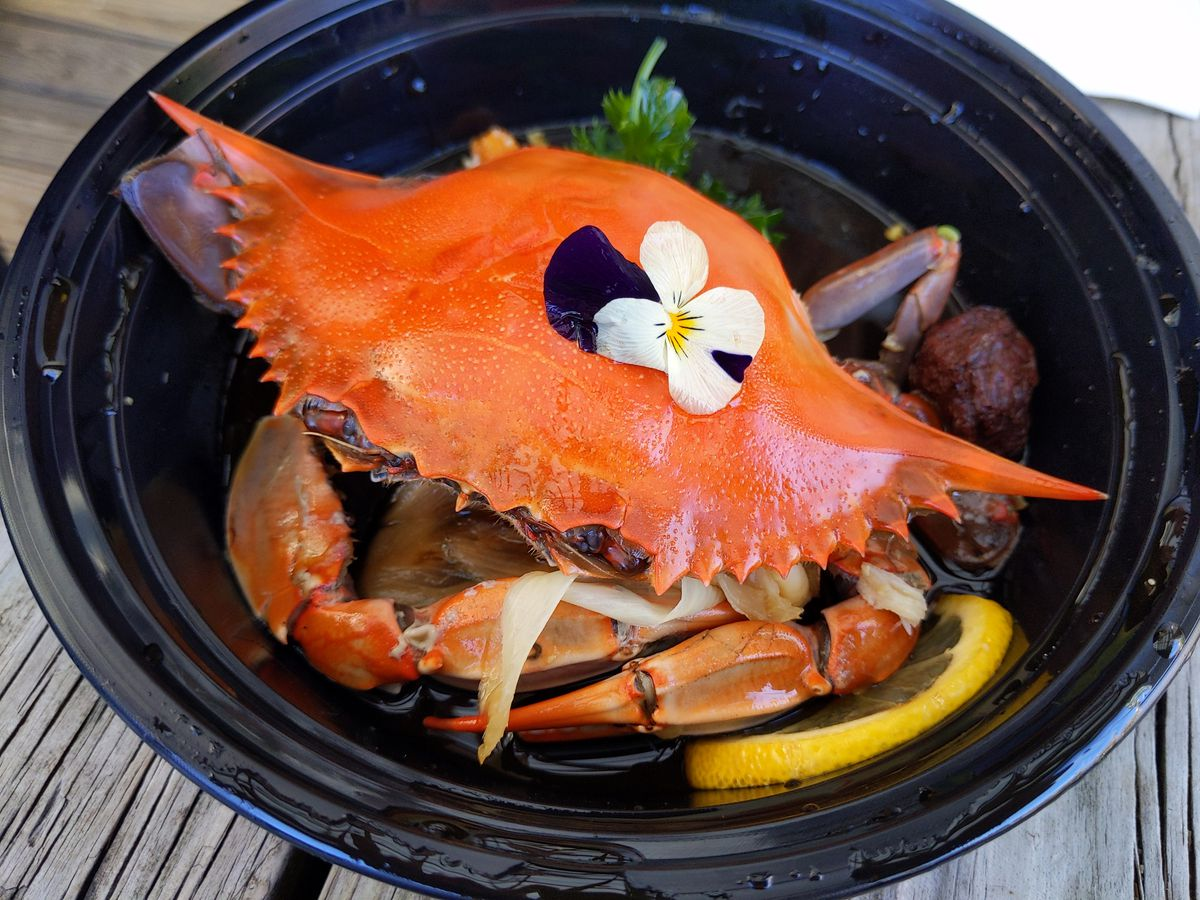 A red crab looks up at you with its beady eyes, with a violet on top.
