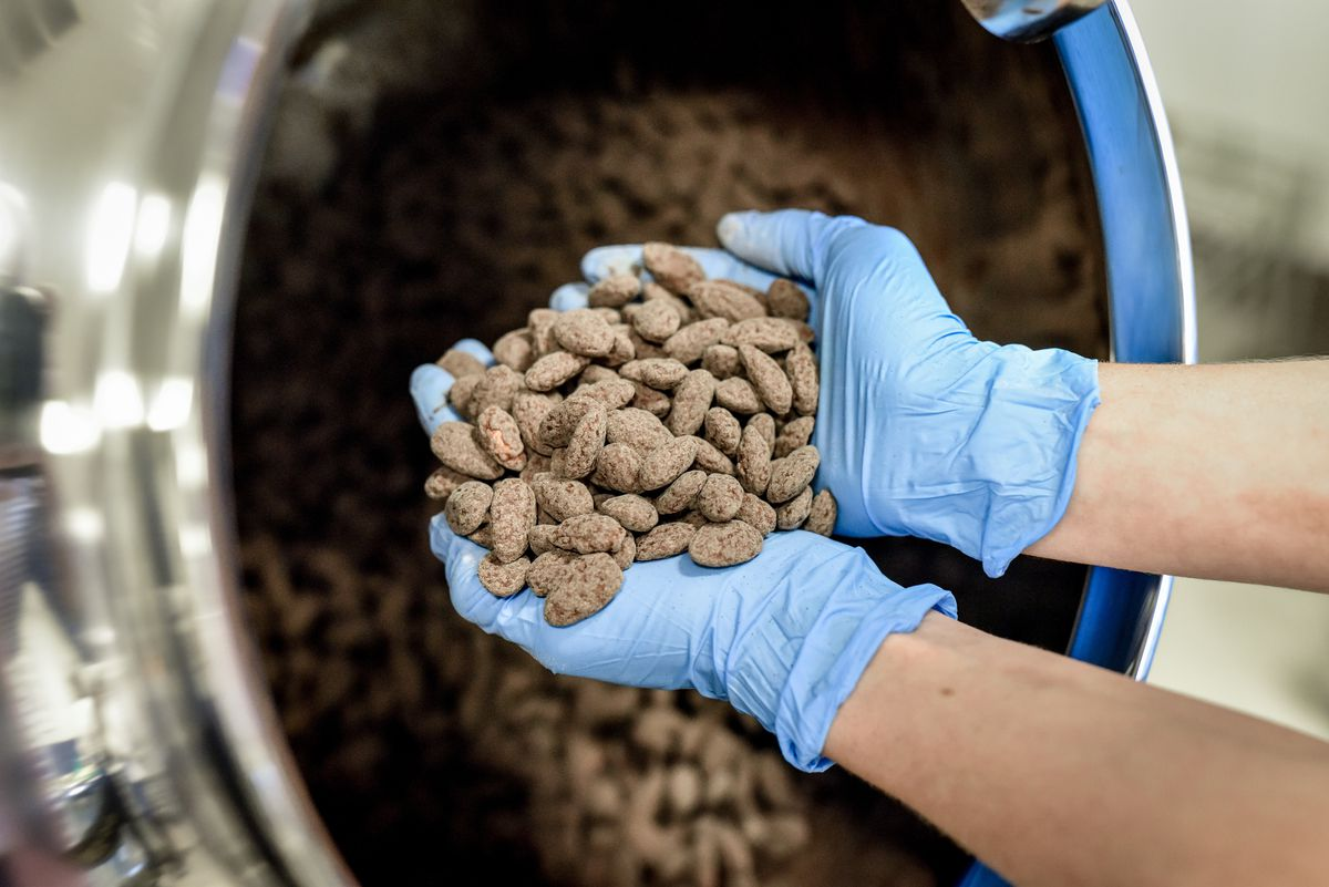 Roasted almonds in the process of being coated in chocolate