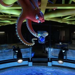 """Hank (voice of Ed O'Neill) is an octopus — or actually a """"septopus"""": he lost a tentacle — along with his sense of humor — somewhere along the way. When Dory (voice of Ellen DeGeneres) finds herself at the Marine Life Institute, a rehabilitation center and aquarium, Hank reluctantly agrees to help her navigate the massive facility."""