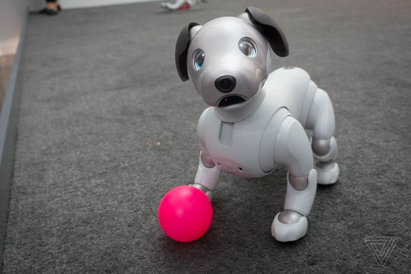 i played with sony s new aibo robot dog and i miss it already