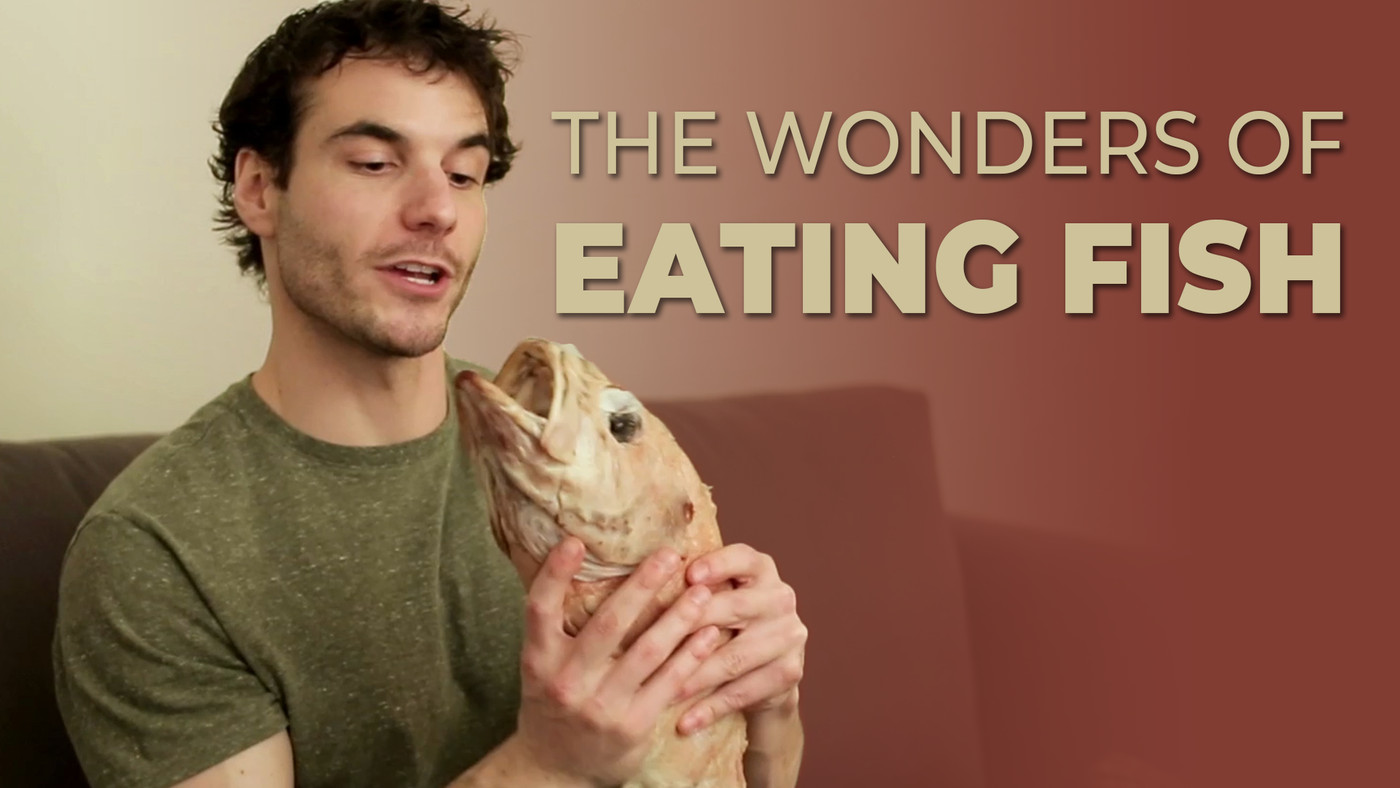 These Guys Reveal The Most Surprising Wonders Of Eating Fish And I'M GLUED