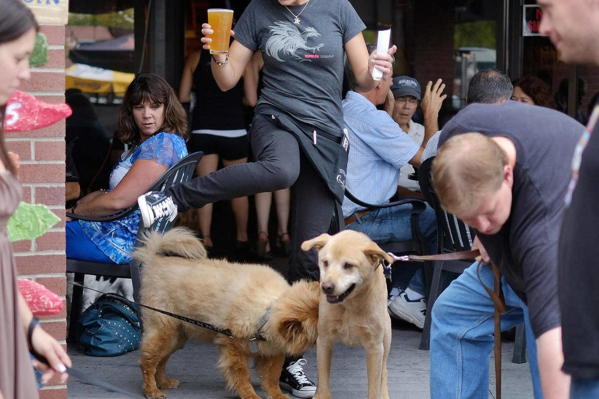 """In this Sept. 12, 2012 photo,  Barley Room waitress Kaitlin Livingstone, center steps over the overcrowded patio during happy hour in Albuquerque, N.M. Dogs abounded at The Barley Room, as the Animal Humane's """"Tail Date"""" club was having one of its monthly"""
