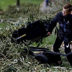 Ryder Baker, 7, helps clean up damage from hurricane-force winds in Centerville on Wednesday, Sept. 9, 2020. The massive windstorm that took out thousands of trees from Cache County to Utah County on Tuesday left nearly 200,000 customers without power.