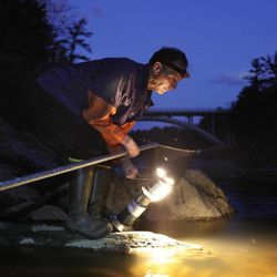 In this photo made Thursday, March 23, 2012, Bruce Steeves uses a lantern while dip netting for elvers on a river in southern Maine. Elvers are young, translucent eels that are born in the Sargasso Sea and swim to freshwater lakes and ponds where they grow to adults before returning to the sea. Adult eels are sold for food in Asia.