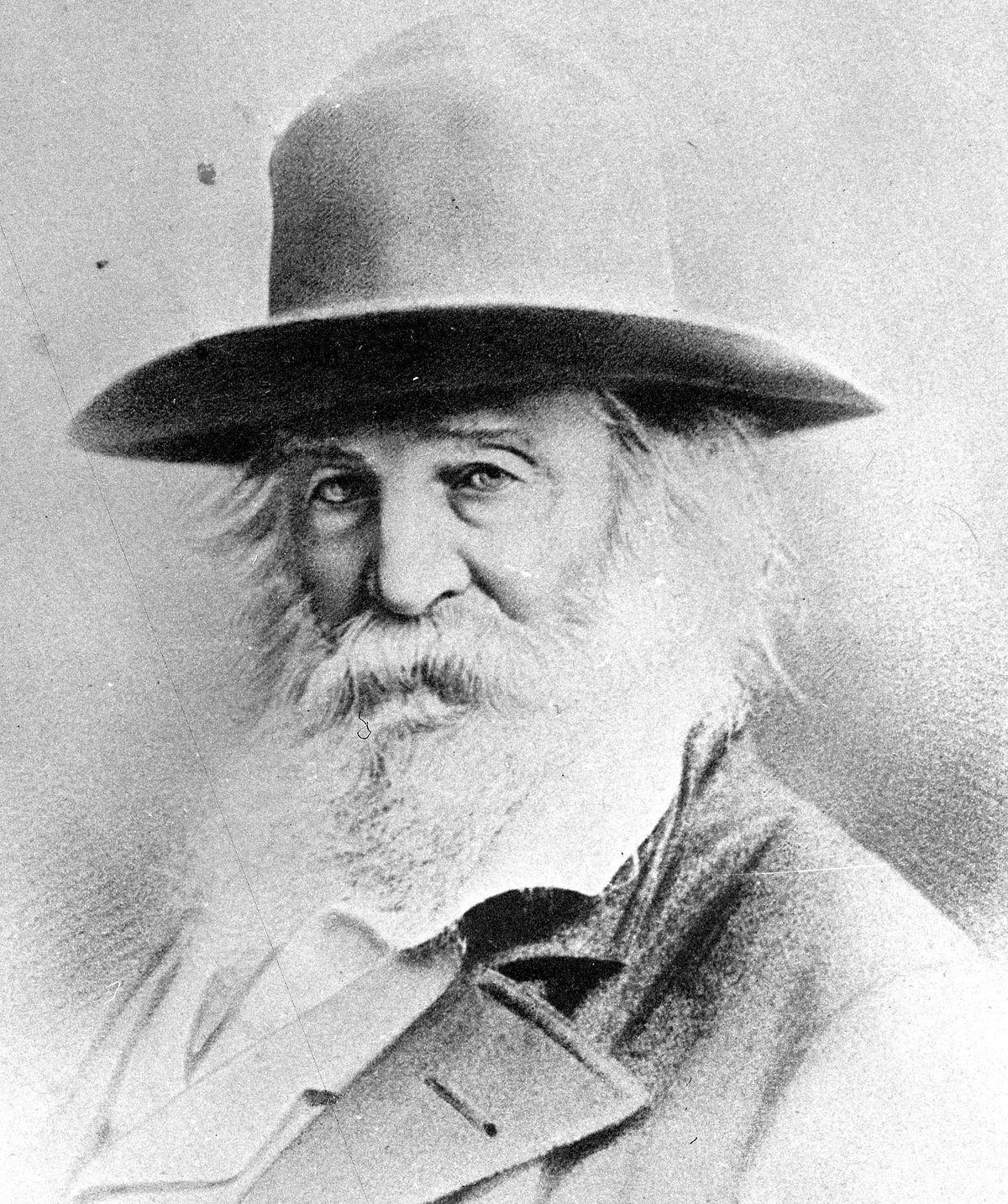 Whitman profile