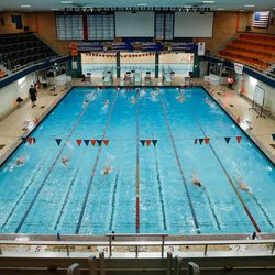 Evanston swimmers work on their strokes during practice on August 19, 2020.