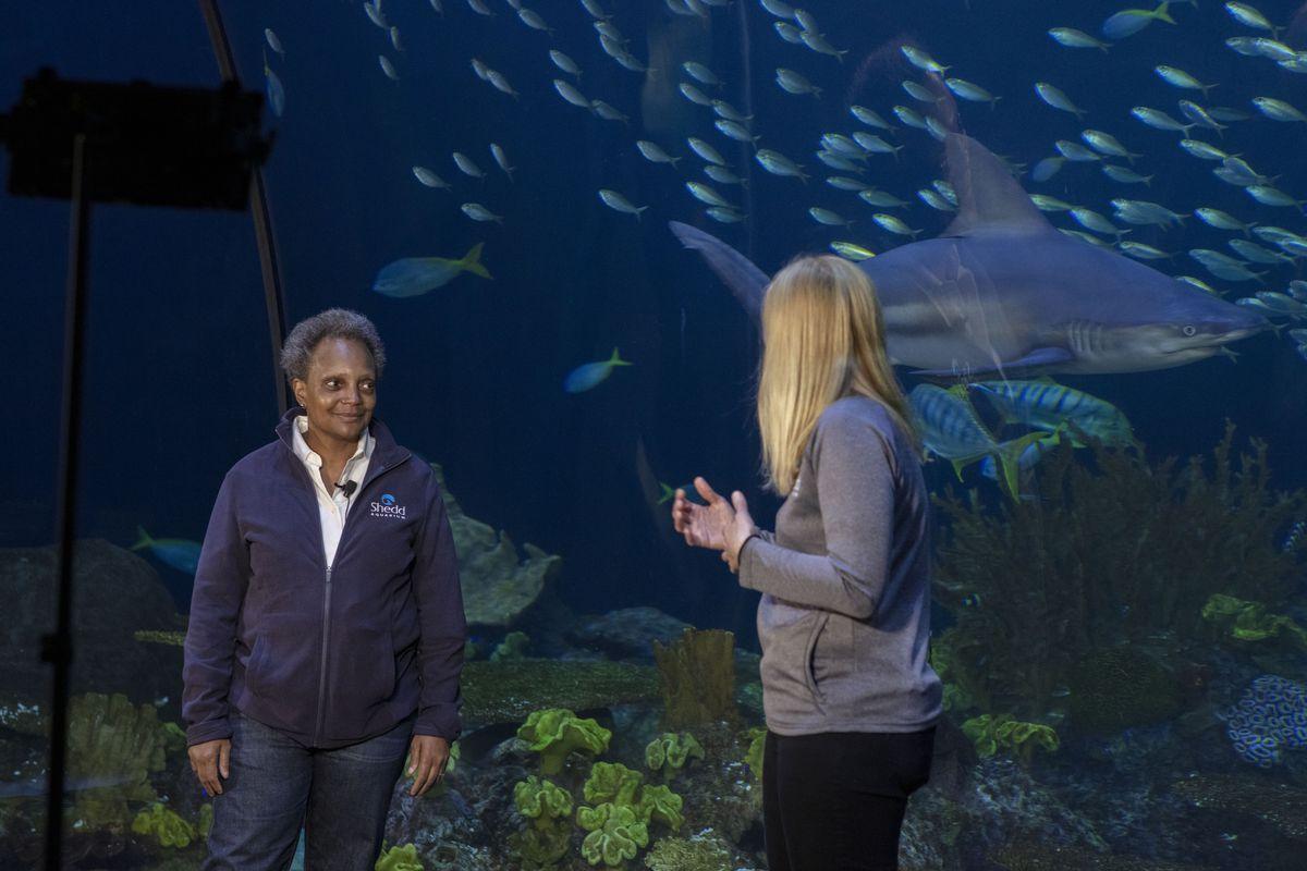 Mayor Lori Lightfoot (left) takes viewers behind the scenes at the Shedd Aquarium.