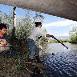 Calah Worthen, right, environmental scientist for the Utah Department of Environmental Quality's water quality division, takes water quality measurements at the Jordan River in North Salt Lake on Monday, July 18, 2016. Environmental scientist Suzan Tahir records the measurements.
